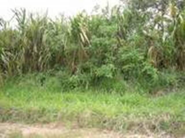 Turmero - Terrenos y Parcelas