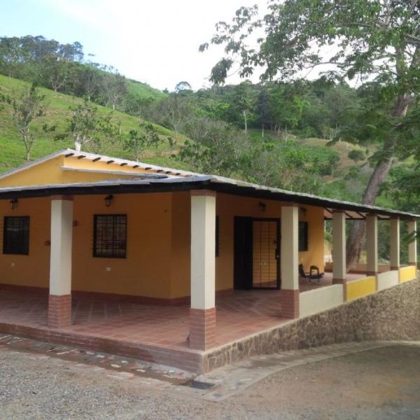 Bejuma - Terrenos y Parcelas
