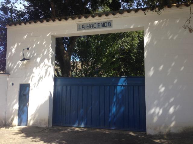 Bejuma - Haciendas y Fincas