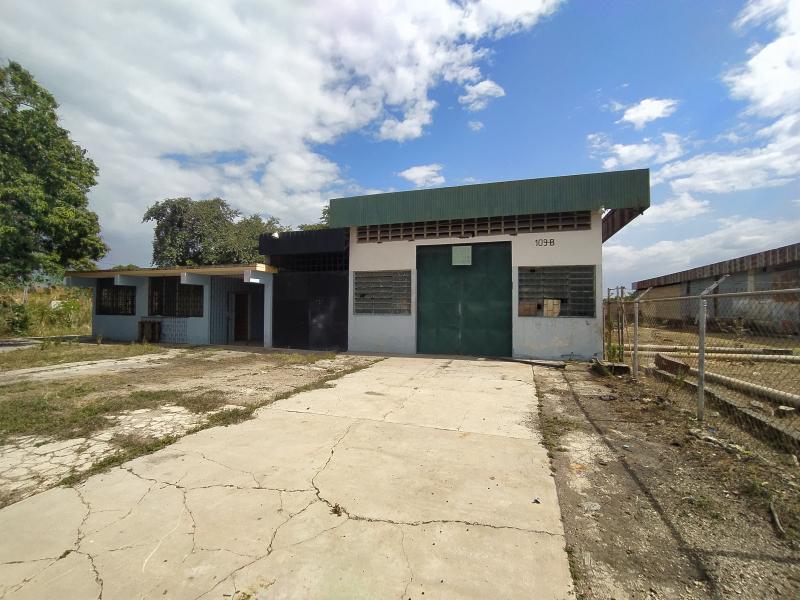 Flor Amarillo - Locales Industriales y Galpones