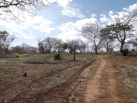 Valle de la Pascua - Terrenos y Parcelas