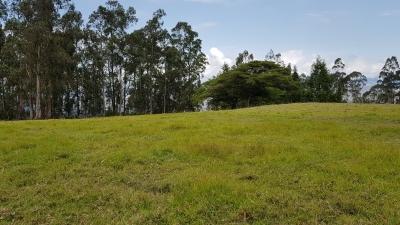Guayllabamba Terreno de venta de 6200 metros cuadrados.