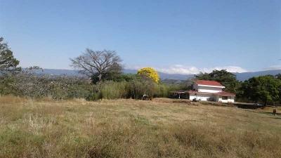 Finca para desarrollo en venta en Alajuela, La Garita, REF. 3161
