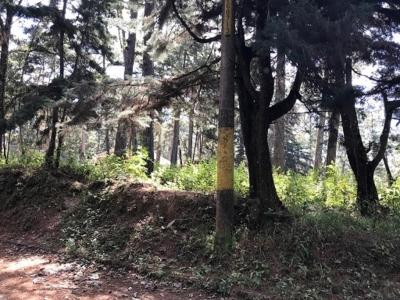 Terreno en Venta Mixco, El Encinal, Tronco 18, 2,962.33 v2, US$125,000
