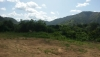 San Juan de los Morros - Terrenos y Parcelas