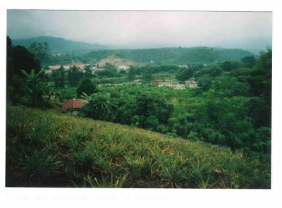 Bonito terreno de 7000 vras. en zona 8 San Miguel Petapa