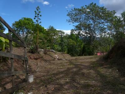 Se vende hermosa propiedad en Bajo claras de la fila de guayabo de mora