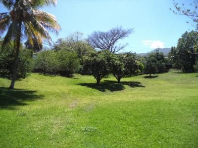 CityMax Vende Terreno Comercial/Residencial en Brasil Mora