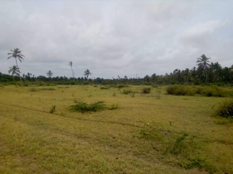 San Juan de los Cayos - Haciendas y Fincas
