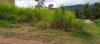 Cardenas - Terrenos y Parcelas