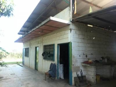 Terreno en La Mariposa Tocuyito