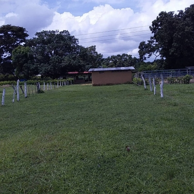 Safari Country Club Carabobo