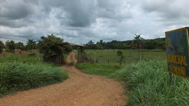 Camatagua - Terrenos y Parcelas