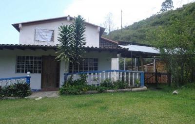 FINCA UBICADA EN CANEYES