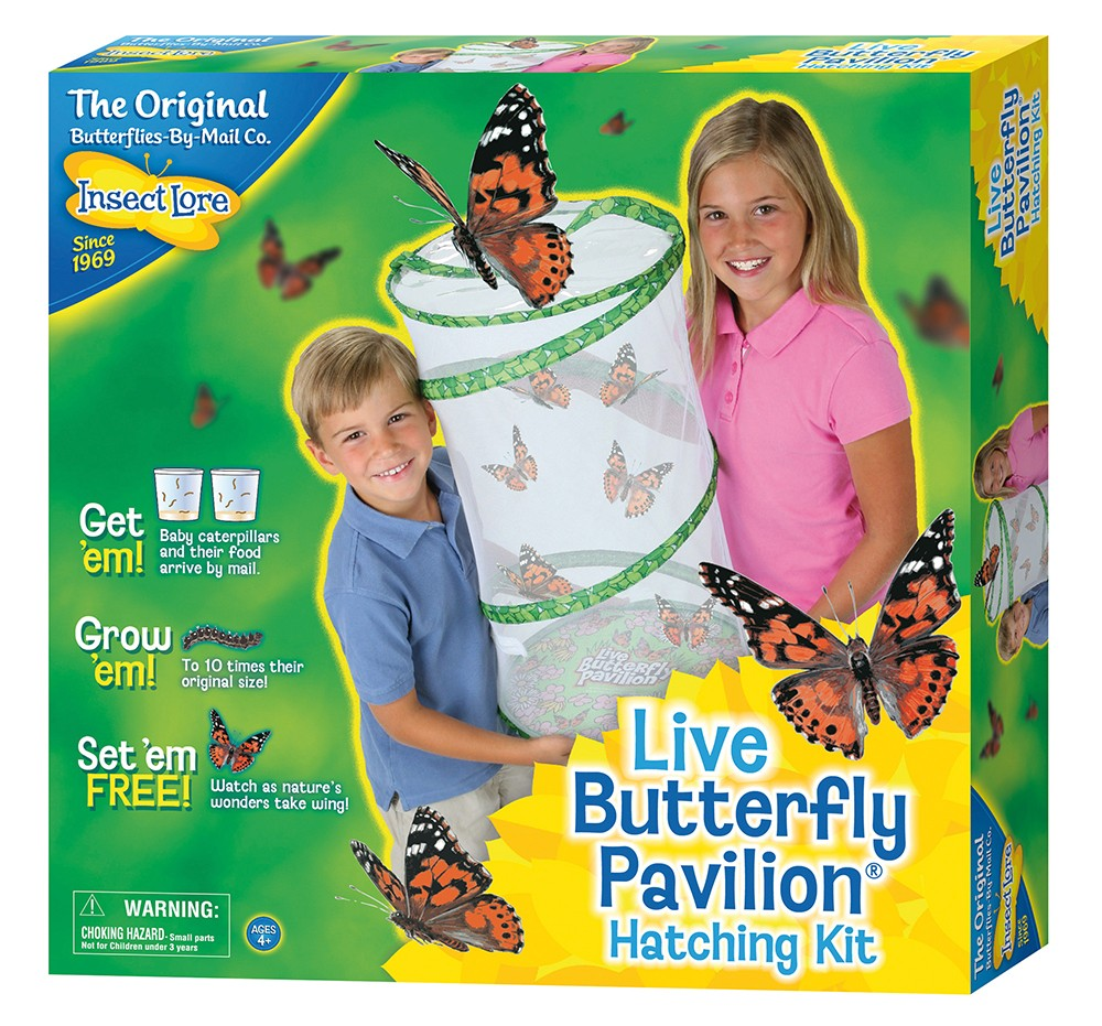 Butterfly Pavilion with 6-10 LIVE Caterpillars