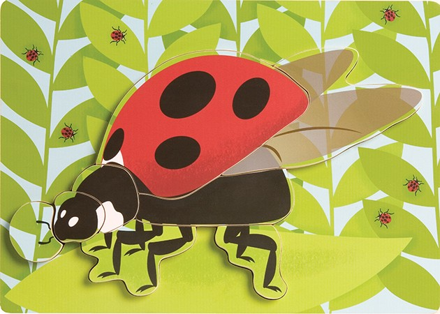 Ladybird Wooden Lifecycle Puzzle