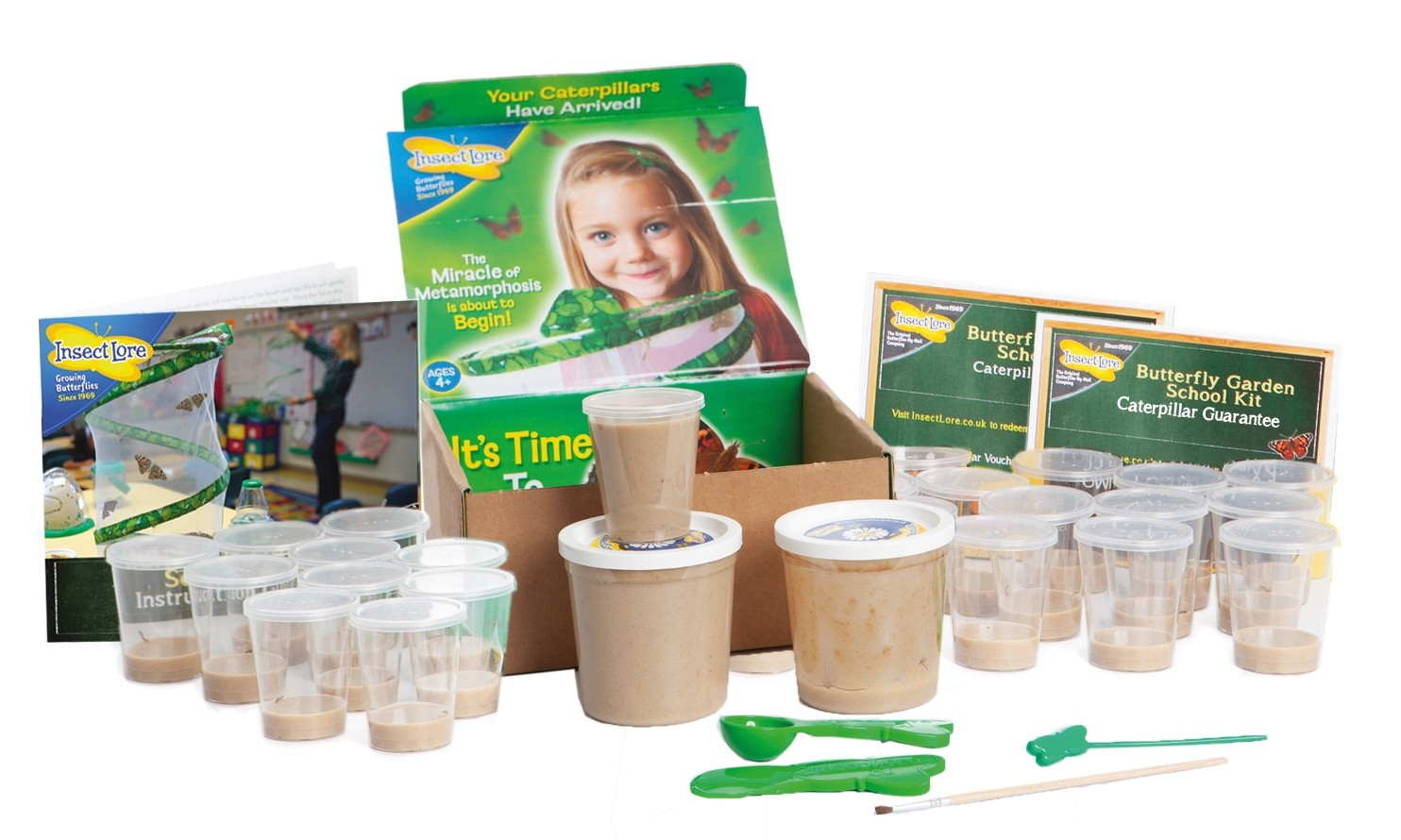 Refill Caterpillars for SCHOOL KIT (33 Caterpillars)