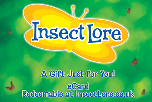 Insect Lore Gift Card