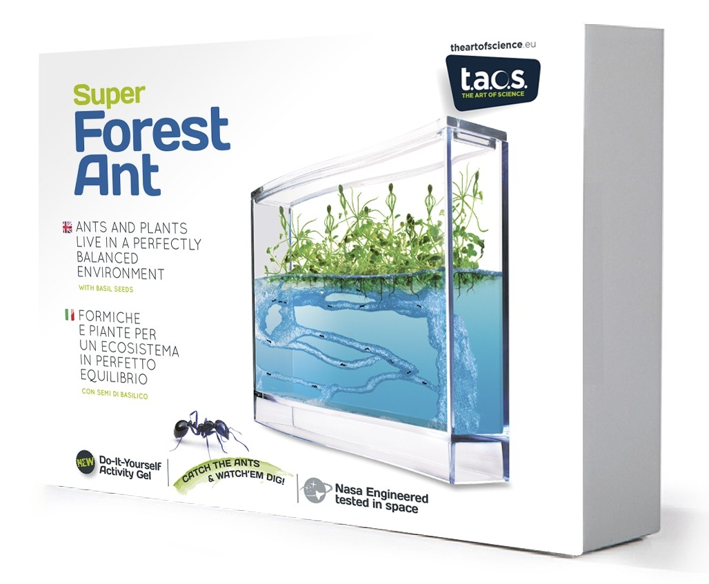 Super Forest Ant