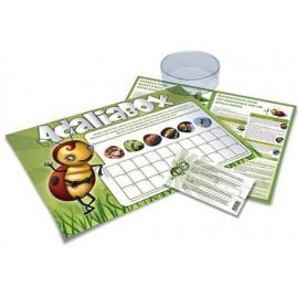 Adalia Box - Live Ladybird Eggs Food