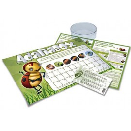 Adalia Box - Ladybird Rearing Kit