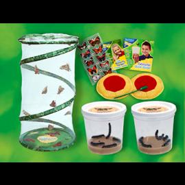 Butterfly Garden Bonus Pack with Live Caterpillars!