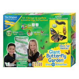 Giant Butterfly Garden with 6-10 LIVE Caterpillars and Lifecycle Stages