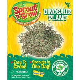 Dinosaur Plant