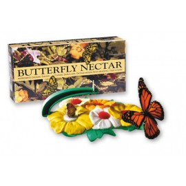 Butterfly Feeder And Nectar Set