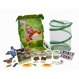 Butterfly Garden DELUXE GIFT SET with 6-10 LIVE Caterpillars