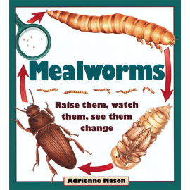 Mealworms Book