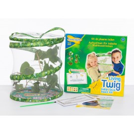 Living Twig - Stick Insect Kit