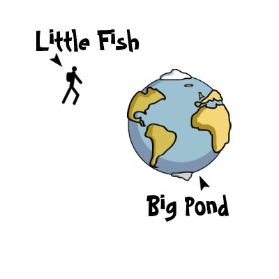 Small fish in a big pond internship saga for Big pond fish