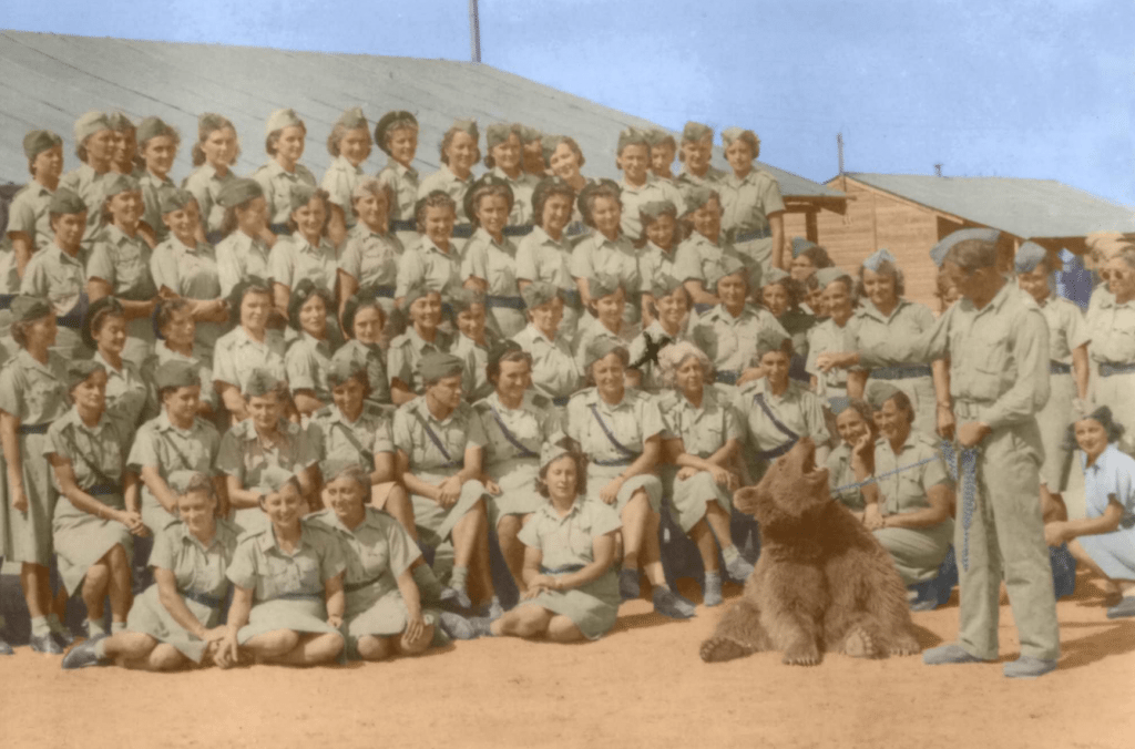 The Polish Regiment that Wojtek belonged to in 1942
