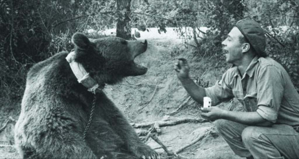 Wojtek seen here eating cigarettes