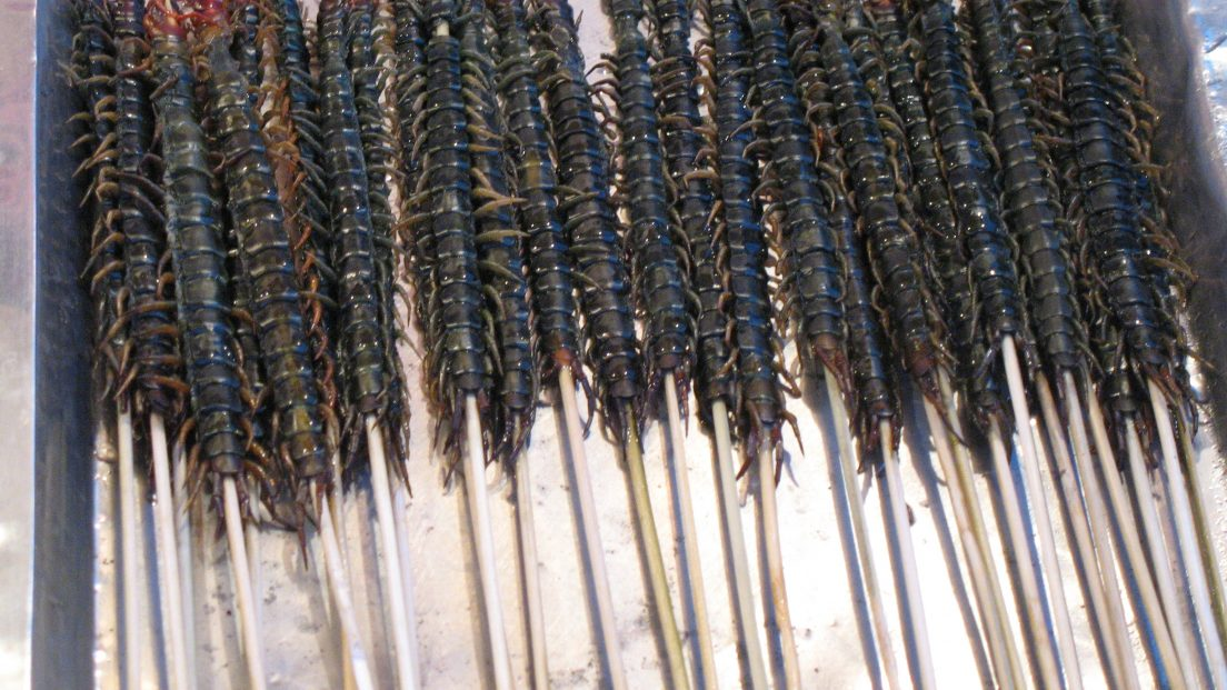 By Denise Chan from Hong Kong, China - Centipedes on a stick Uploaded by tomchen1989, CC BY-SA 2.0,