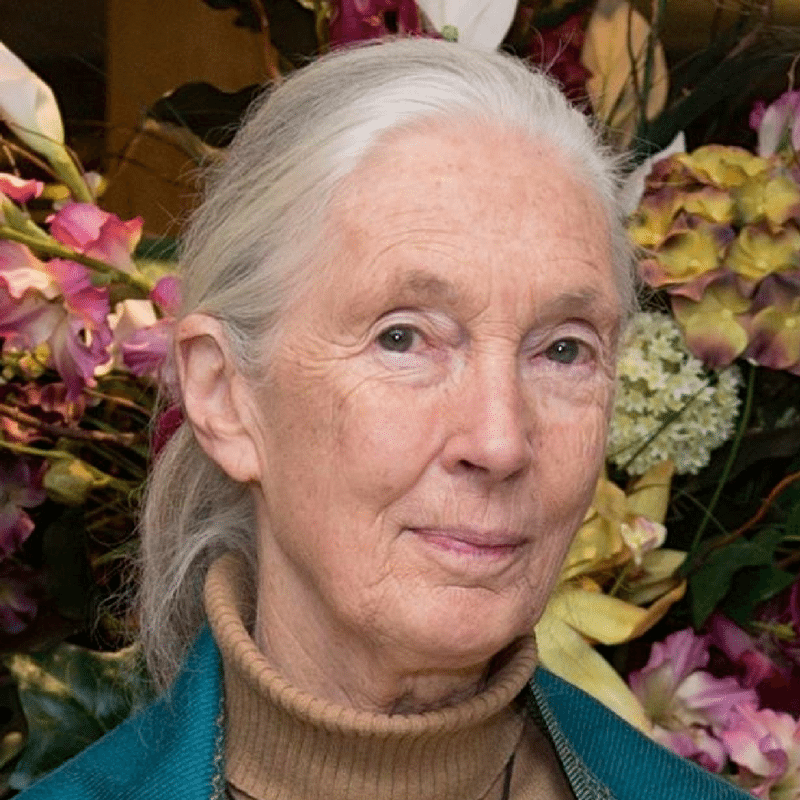 jane goodall women in science