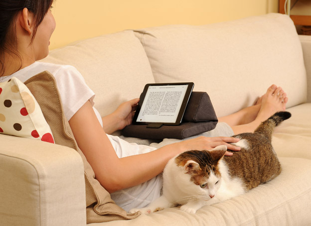 IPEVO PadPillow Lite – Pillow Stand for iPad