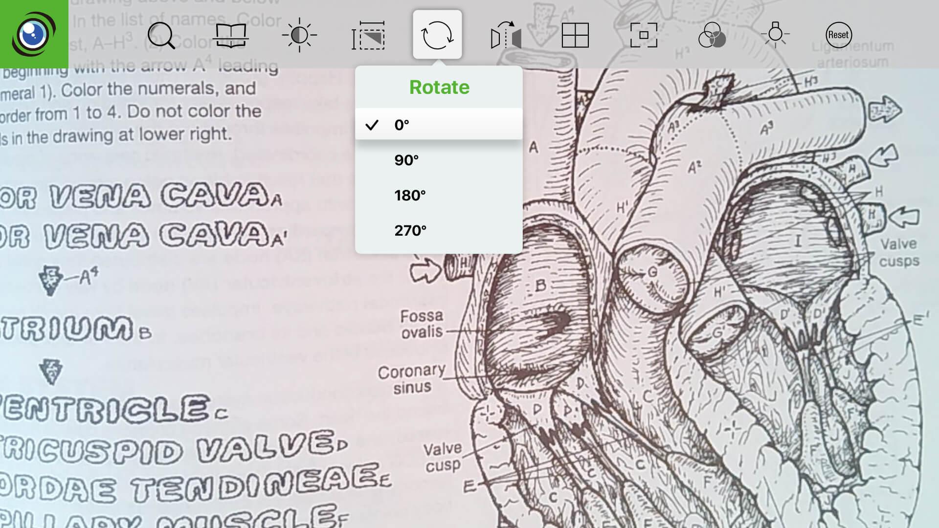 IPEVO Visualizer for tvOS