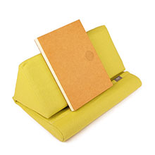 IPEVO Bundle (2 IPEVO PadPillow Stands - Lemongrass and 5 IPEVO Notebooks)