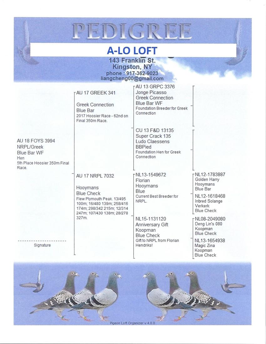 5th    3994-AU18-FOYS  BBflt H     A-Lo-Loft – NY    Nrpl7032xGreek341thanksjg 1st Drop