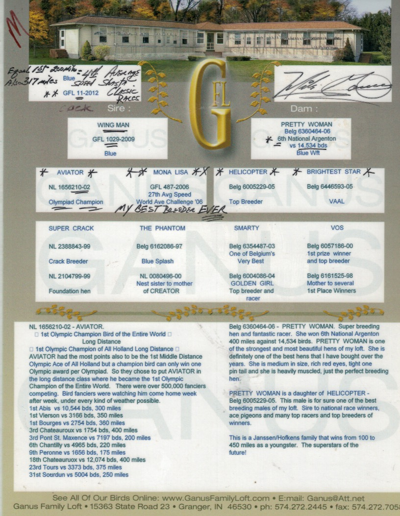 GFL 11-2012