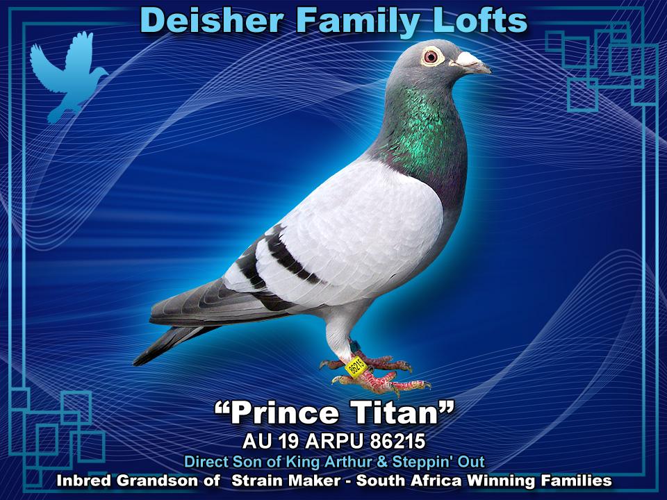 PRINCE TITAN AU 19 ARPU 86215