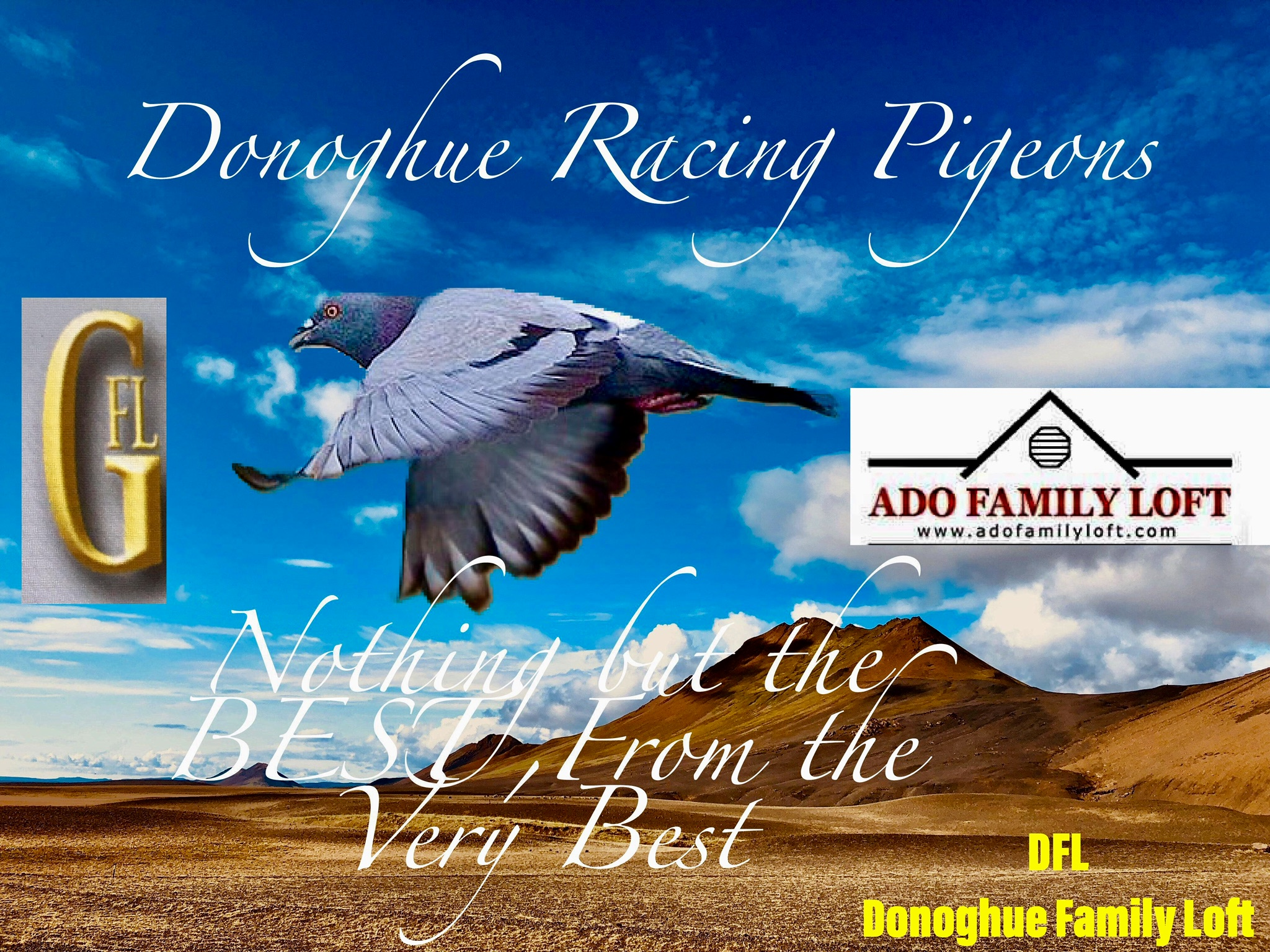 Best of SAMDPR WINNING FAMILY AFL GFL