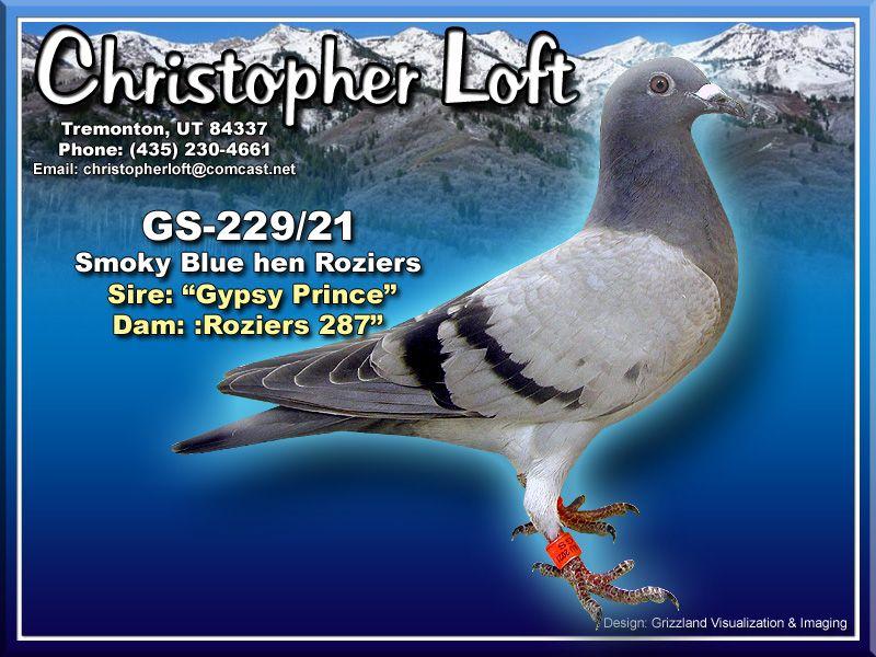 GS-229/21