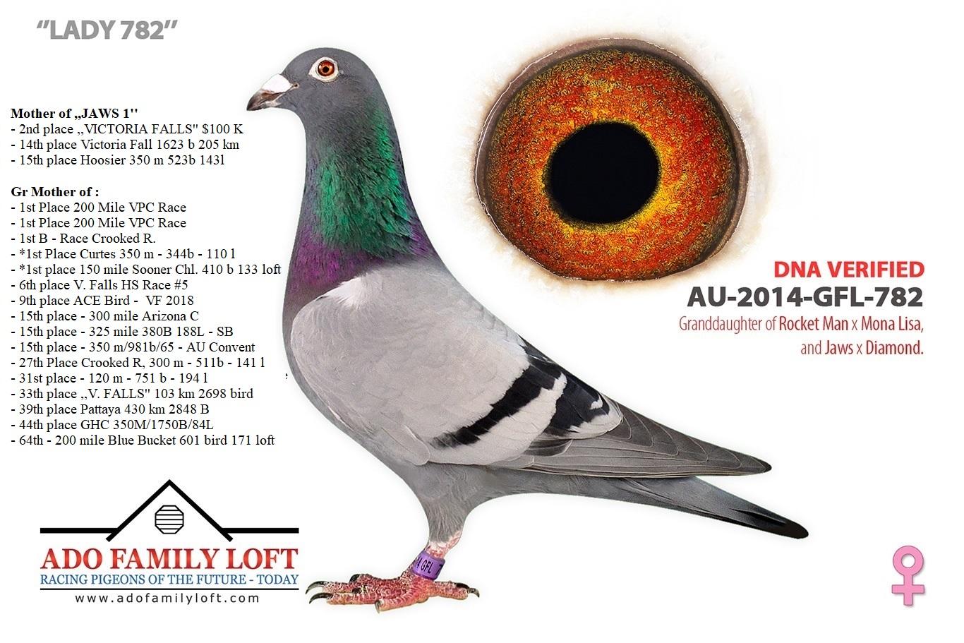 GFL 782 - 2014
