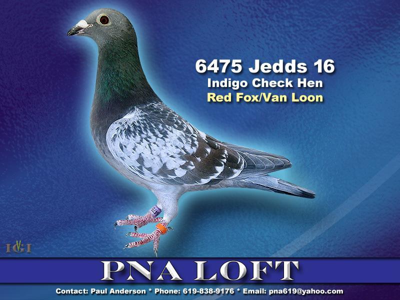 Van Loon/ Red fox breeding.