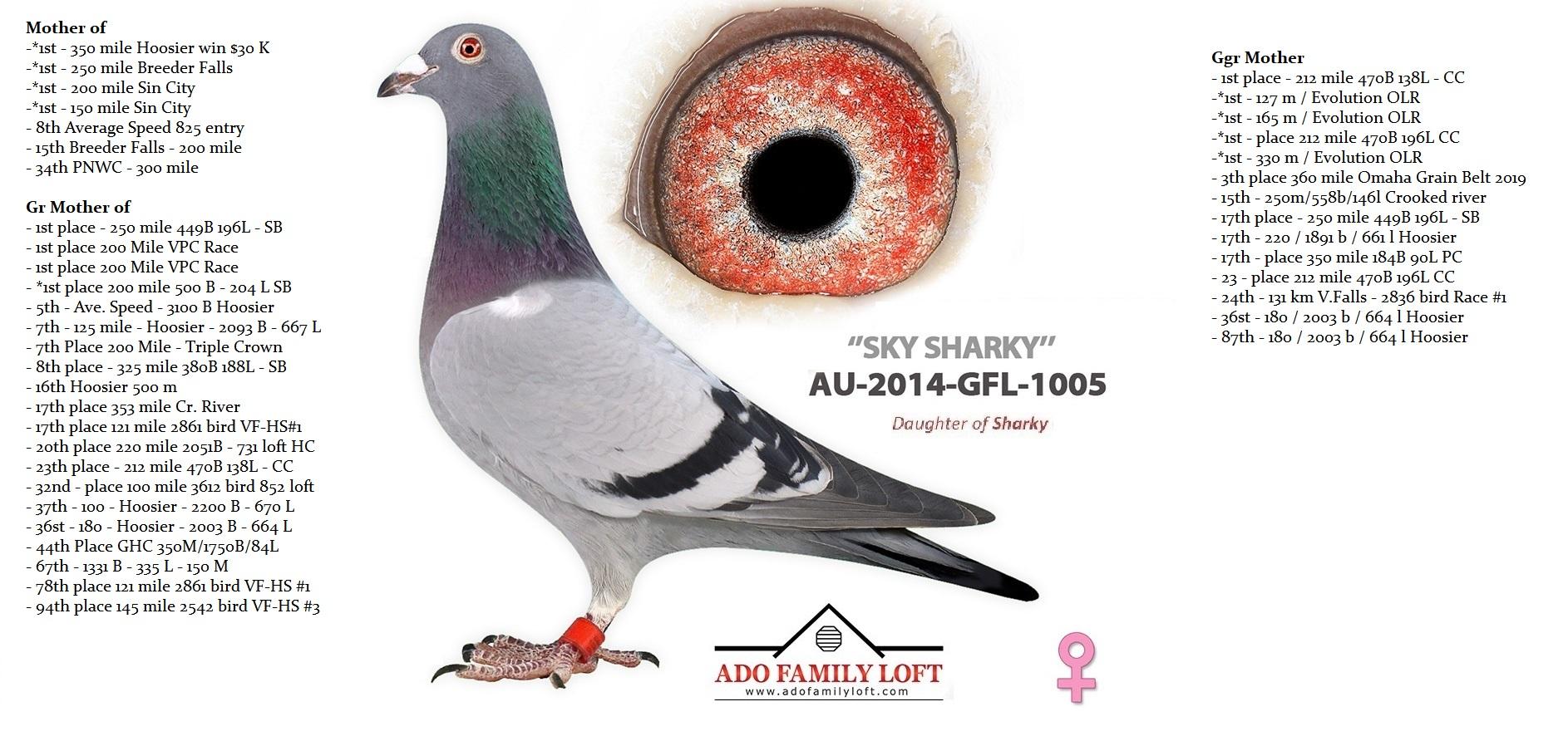 GFL 1005 - 2014
