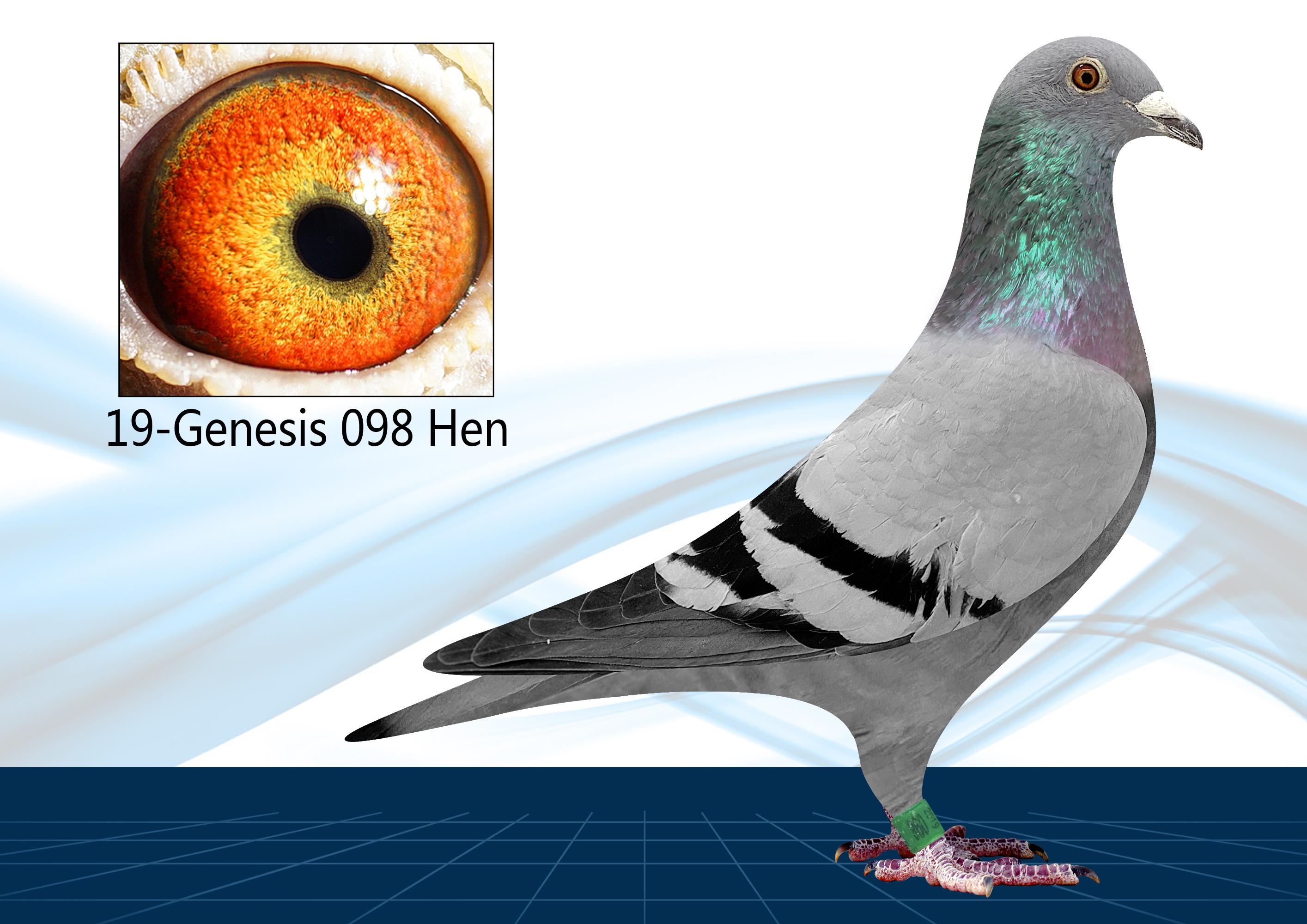 19-098(Hen) Off Ocean Commander