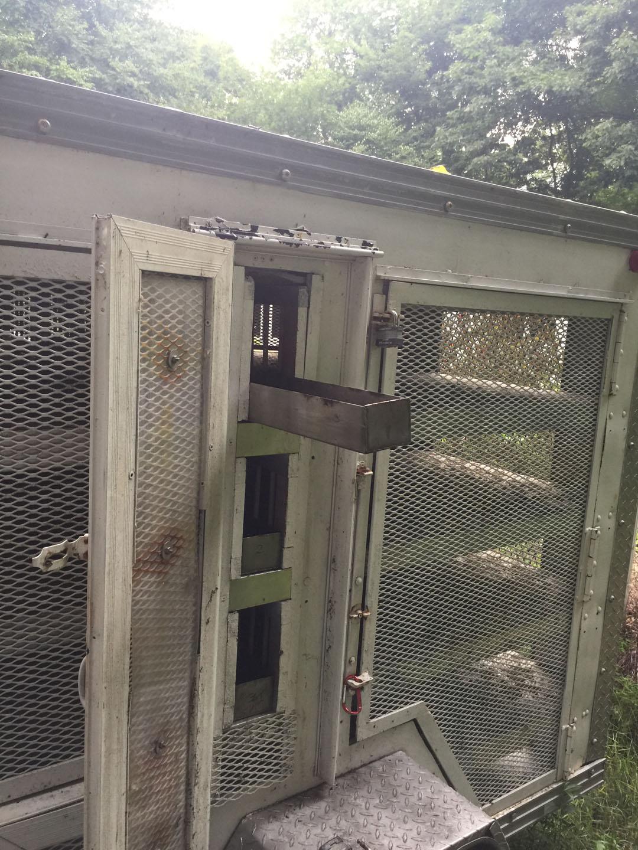 Pigeon Training Trailer